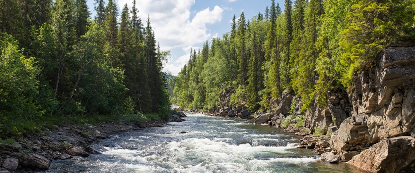 Digital Engineering to bring real-time, online environmental monitoring to Canada